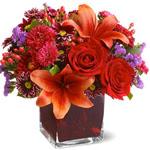 Stylish Winter Bouquet